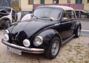 Käfer 10