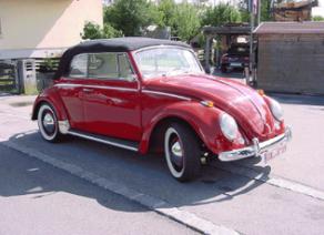 Käfer 6